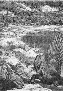 История земли и жизни на ней